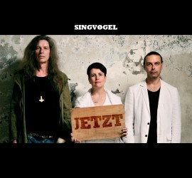 Singvøgel - Jetzt - Front Cover
